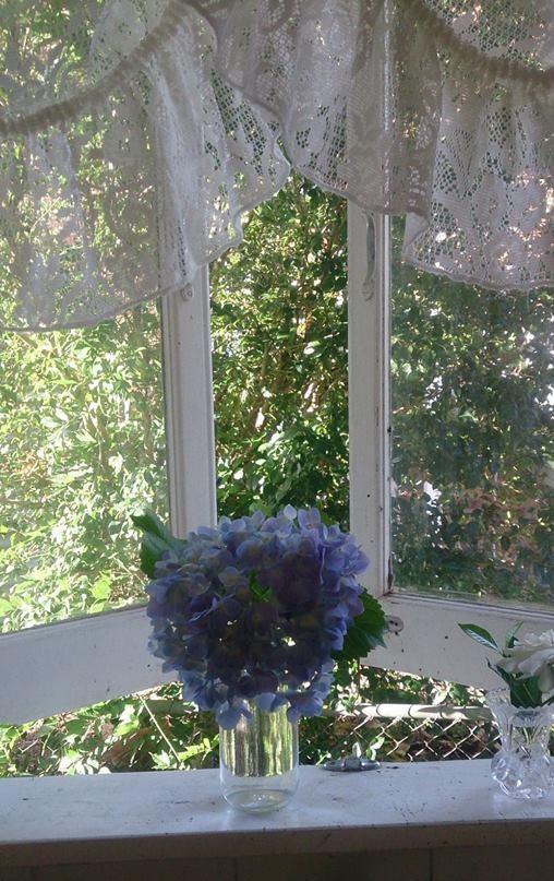 Pam Easton - Namour window view kitchen